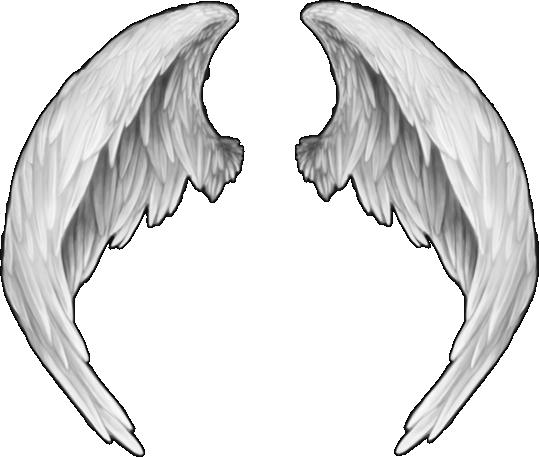 Messaggi degli Angeli